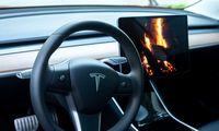 """""""Tesla"""" Kinijoje atšaukia 870 automobilių dėl defektuotos stogųapdailos"""