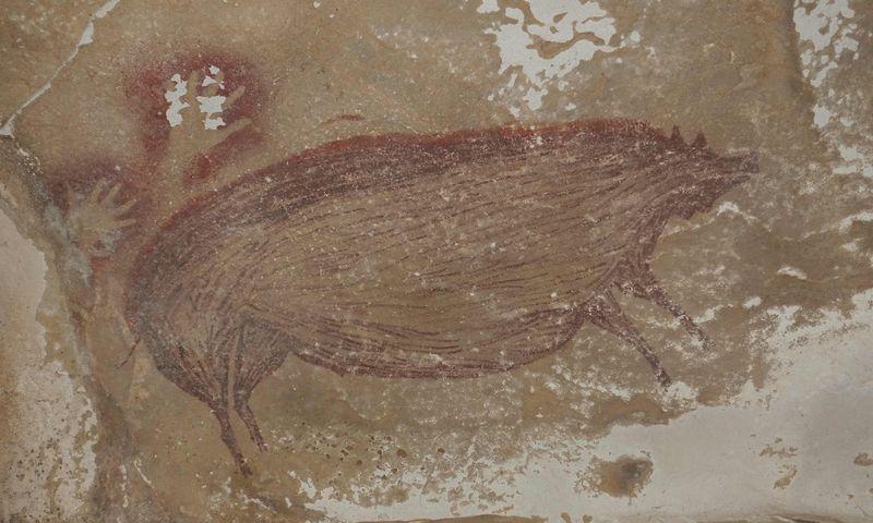 """Manoma, kad prieš mažiausiai 45.500 metų nupiešta kiaulė yra seniausias žinomas uolų piešinys pasaulyje. Maxime Auberto (Griffith universiteto / AFP / """"Scanpix"""") piešinys."""
