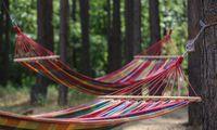 Tyrimas: 5 minutės pietų miego naudinga sveikatai ir atminčiai