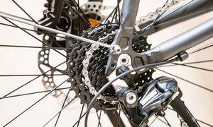 Lietuvoje kuriasi dviračių gamintojas iš Vokietijos