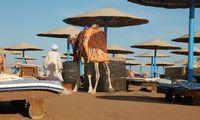 """""""Novaturas"""" atnaujina skrydžius į Egiptą"""