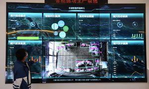 """Nesisekant su išmaniaisiais, """"Huawei"""" veido atpažinimo technologijas kurs kiaulių ūkiams"""