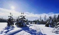 Pamėgote slidinėti? Atlydis – dar ne sezono pabaiga