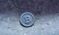 58.000 USD pasiekęs bitkoinas brangus jau ir E. Muskui