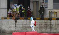 PSO tyrėjų neįtikina Kinijos teorija apie koronaviruso kilmę