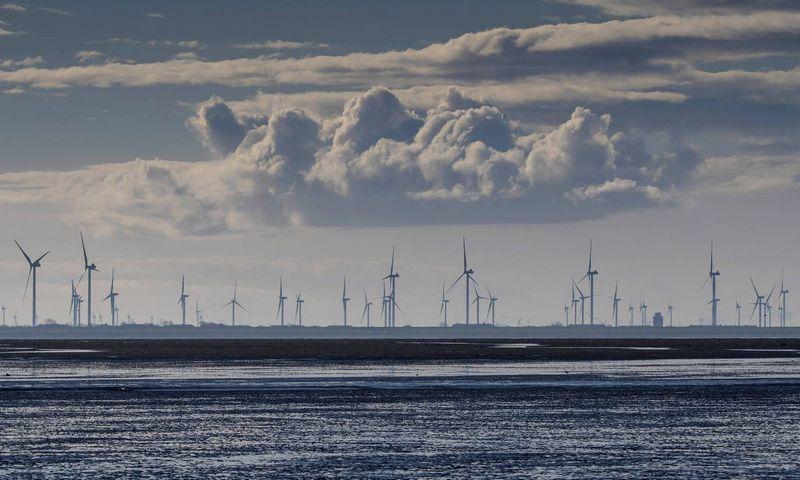 "Vėjo jėgainių parkas Vokietijoje. ""Imago"" / ""Scanpix"" nuotr."