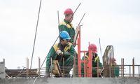 Statybininko kortelę tikimasi įteisinti iki metų vidurio