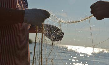 Verslinės žvejybos draudimas: mėgėjai džiaugiasi, bendrovės abejoja dėl naudos