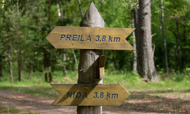 Kuršių nerija. Nuoroda į Preilą ir Nidą prie dviračių tako. Juditos Grigelytės (VŽ) nuotr.