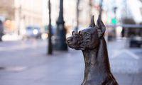 Seimas balsavo už gyvūnų gerovę: ženklinti bus privaloma, pardavinėti turguose –nebegalima