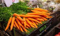 Maisto tiekėjų ir pirkėjų reguliavimo įstatymų projektai – Seimo rankose