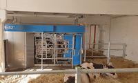 """""""Linas Agro Group""""investicijos į melžimo robotus ir vandens lovas karvėms"""