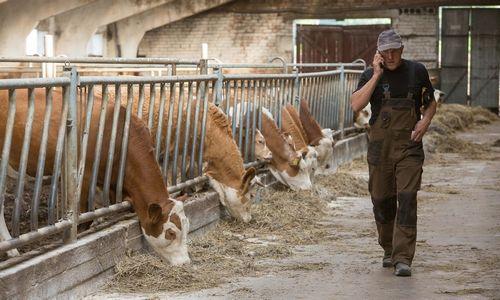 Nukentėję ūkininkai dar neišsidalijo 30 mln. Eur, kurie jiems skirti