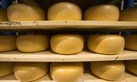Metų pradžia pienininkams sudėtinga – mažėja gamyba ir eksportas