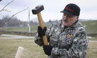 Baltarusijos režimas kaltina 4 asmenis sąmokslu nužudyti A. Lukašenką