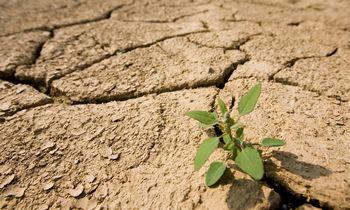 Karantinas leido atsikvėpti, tačiau klimato kaitos nepristabdė