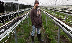 """""""Dehidros"""" strategija neskubėti, išmokti ir investuoti pasitvirtino: įtiko JK didiesiems"""