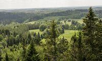 Startuolis siūlo investuoti į mišką ir kalba apie 10% grąžą