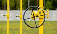 """""""Amber Grid"""" beveik trečdaliu mažina dujų perdavimo kainą 2022 metams"""
