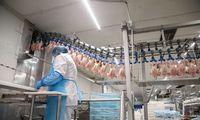 EK patvirtino 6,9 mln. Eur Lietuvos paramą kiaulienos ir paukštienos sektoriams