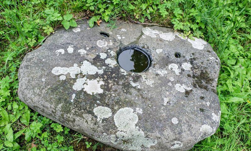 Liukonių akmenys. Juditos Grigelytės (VŽ) nuotr.