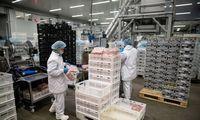 Pramonės produkcijos kainos augo 11,9%