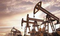 DAUGIKLIAI: aptiko landą, naudingą naftos pramonei: iškreipia statistiką, skatina naudoti iškastinį kurą