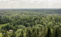 Į mišką ir žemę investuojantis INVL fondas pasiekė 51 mln. Eur dydį