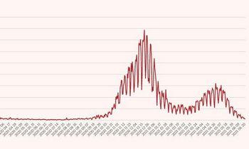 Pirmadienį nustatyti 58 koronaviruso atvejai, mirė 4 žmonės