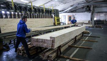 Brangios medienos burbulas sprogo: kainos laisvame kritime