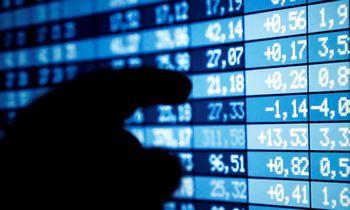 Būsimas pensijas fonduose augino dviženkle išraiška