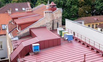 Lietuvos miestuose ant įstaigų, organizacijų, įmonių stogų bus įkurdinti 25 aviliai