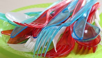 Prekyboje nebelieka plastiko indų, šiaudelių, ausų krapštukų