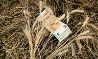 Ūkininkams lengvatinių paskolų mokėjimas pratęstas iki metų pabaigos