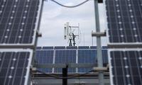 """""""Litgrid"""" ruošiasi saulės ir vėjo elektrinių proveržiui"""