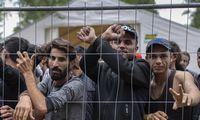 Irako URM atstovas ragina irakiečius netapti prekybos žmonėmis aukomis