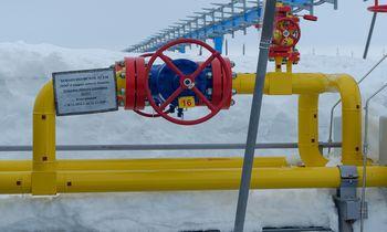 Dėl sušokusių dujų kainų Europoje užsidarė dvi trąšų gamyklos JK