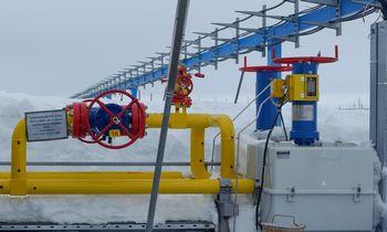 Ekspertas: susiformavo dujų kainų burbulas, jos neatspindi rinkos sąlygų
