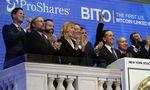 Biržose teigiamos nuotaikos, po ETF debiuto bitkoinas ties rekordinėmis aukštumomis