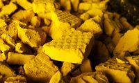 """Rinkose graibstomo """"geltonojo pyrago"""" rasti nėra paprasta, bet įmanoma"""